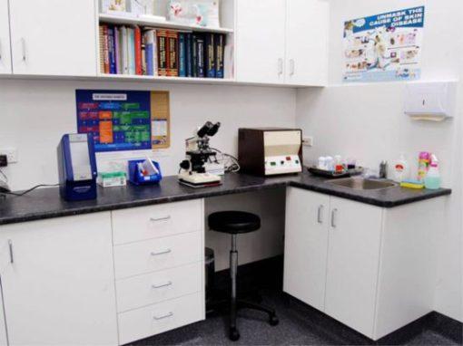 Monier Vet Clinic Fitout